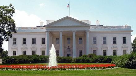 White House Shutters