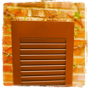 painted exterior shutters